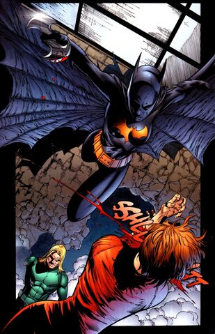 File:Batgirl Cassandra Cain 0053.jpg