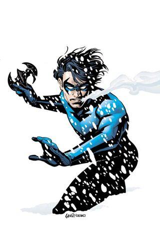 File:Nightwing 0012.jpg