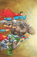 The Superman Family is helped by the Eradicator, who takes control of Doomsday's body.