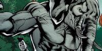Zebra-Man (Prime Earth)