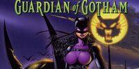 Catwoman: Guardian of Gotham Vol 1