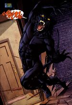 Wildcat Tom Bronson 0001