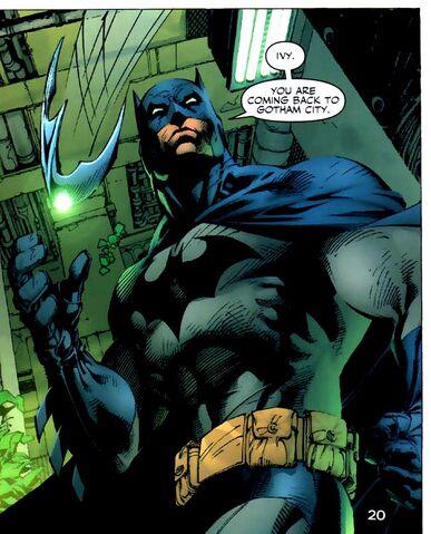 File:Batman 0344.jpg