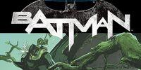 Batman Vol 3 23