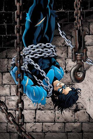 File:Nightwing 0038.jpg