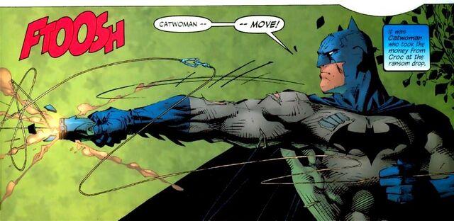 File:Batman 0276.jpg