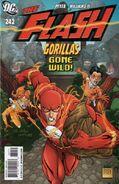 Flash vol 2 242