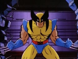 Wolverine Introduction