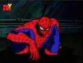 Spider-Man Sits In Sewage.jpg