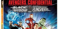 Avengers Confidential: Black Widow & Punisher (Video)