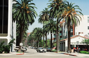 Beverly Hills hires