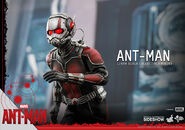 Ant-Man Hot Toys 11