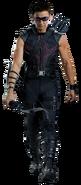Hawkeye Fathead