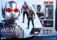 Ant-Man Civil War Hot Toys 20