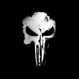 Punisher Series