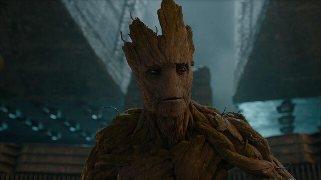 File:Groot on the Dark Aster.jpeg