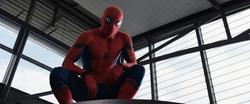 Spider-Man Civil War 08