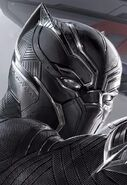 Black Panther's Helmet