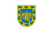 Flag of Mexico City