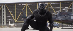 BlackPanther-MoveCaptain