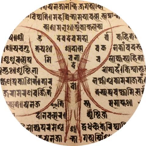 File:Zealots Icon.png
