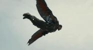 Falcon Ant-Man 8