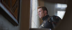 Cap Looking Out Window
