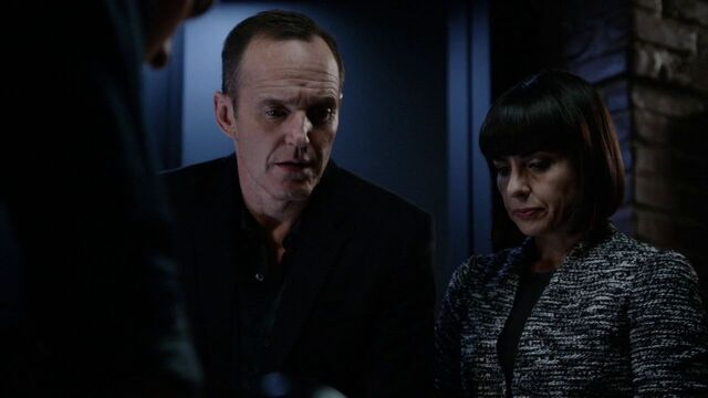 File:Coulson-Price-HYDRA-History.jpg