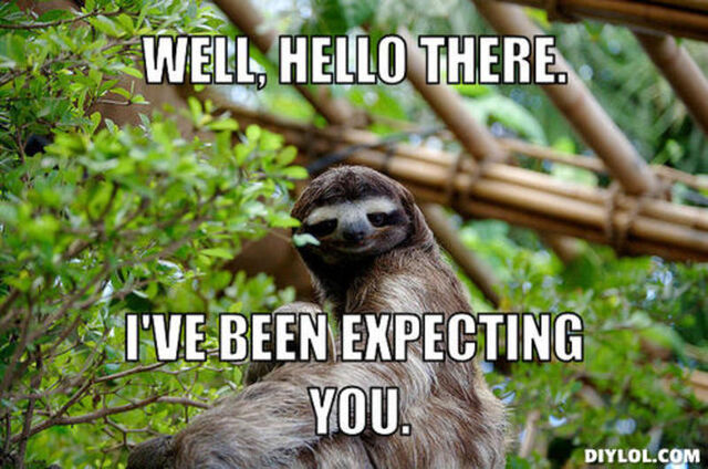 File:Resized sophisticated-sloth-meme-generator-well-hello-there-i-ve-been-expecting-you-6ef752.jpg