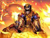 Wolverine (Titan)