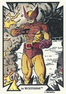 James Howlett (Earth-616) from Todd Macfarlane (Trading Cards) 0002