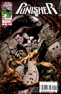 Punisher Vol 8 9