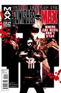 Untold Tales of Punisher MAX Vol 1 2