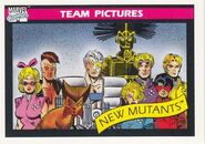 New Mutants (Earth-616) from Marvel Universe Cards Series I 0001