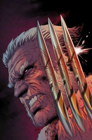 File:Weapon X Vol 3 2 Textless.jpg