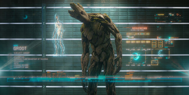 File:Groot (Earth-199999) from Guardians of the Galaxy (film) 001.jpg