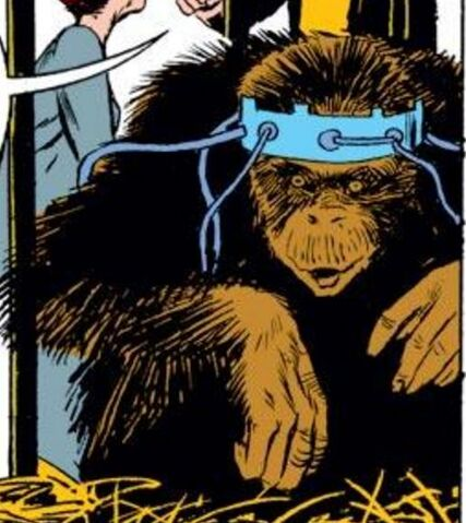 File:Neo-Apes from Iron Man Vol 1 79 0001.jpg