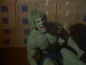David Banner (Earth-400005) from The Incredible Hulk (TV series) Season 4 14 001
