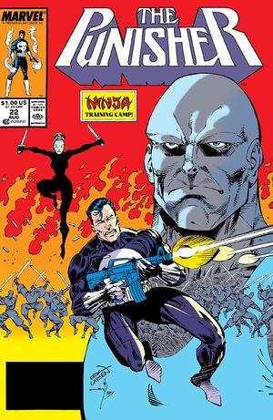 Punisher Vol 2 22