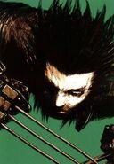 Wolverine Snikt! Vol 1 4 Textless