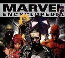 Marvel Encyclopedia Vol 1 Marvel Knights