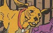 Rambo (Dog) (Earth-616) from Sleepwalker Vol 1 14 001