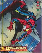 Peter Parker (Earth-616) from The Amazing Spiderman 1st Edition (Trading Cards) 0001