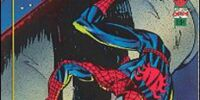 The Amazing Spiderman: 1st Edition (Trading Cards)