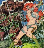 Red Sonja by Frank Thorne