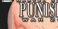 Punisher: War Zone Vol 2 4