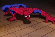 Peter Parker (Earth-92131) As Spider-Man 023