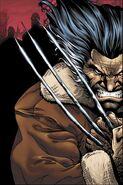 Wolverine 012