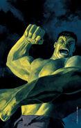 Hulk Nightmerica Vol 1 5 Textless