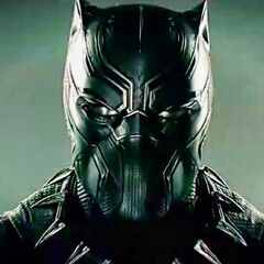 Black Panther costume.